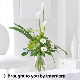 Graceful Calla Lily & Anthurium Vase