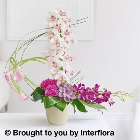 Exotic Orchid &  Calla Lily Arrangement